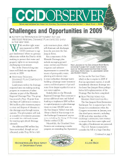 CCID Observer 2008 - Issue 4