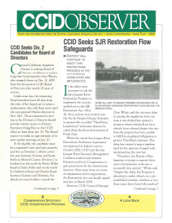 CCID Observer 2009 - Issue 4