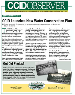 CCID Observer 2013 - Issue 3