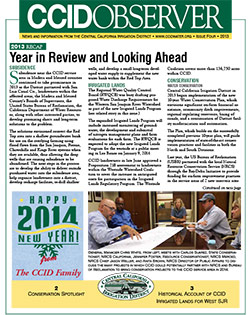 CCID Observer 2013 - Issue 4